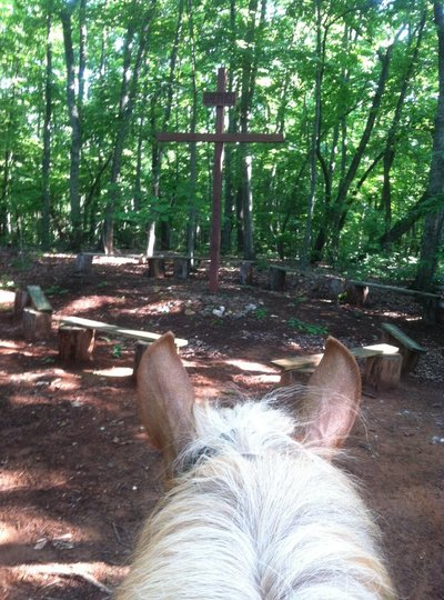 Horseback Riding & Trail Rides | Greenville, SC & Upstate